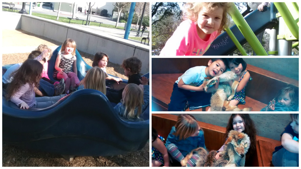prek field trip collage